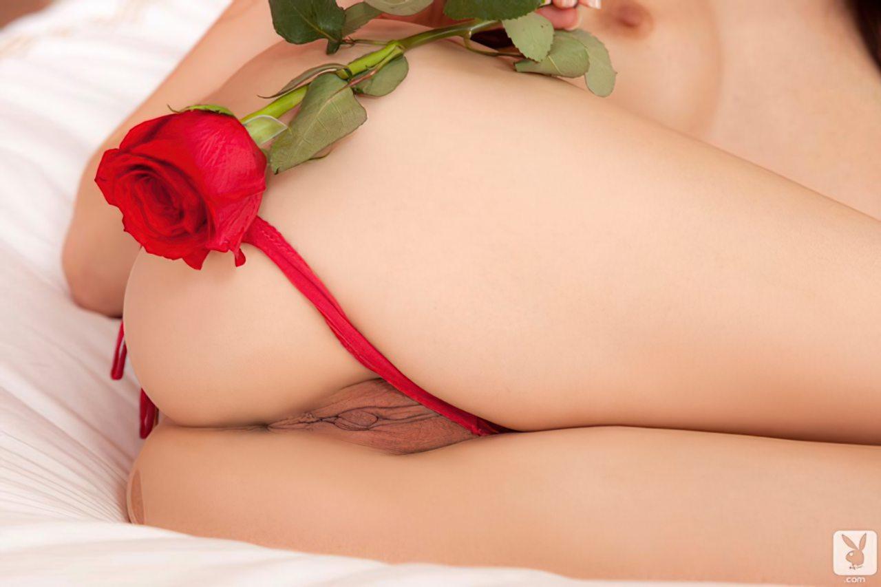 Cassie Laine (3)