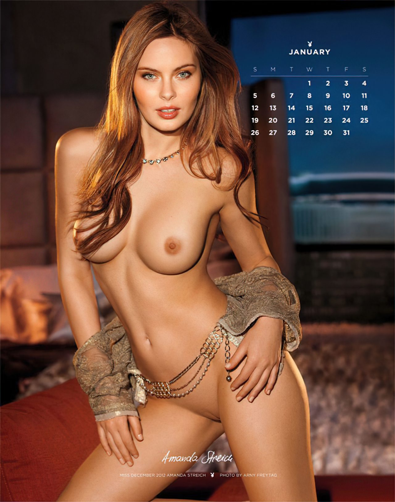 Calendário Playboy 2014 (1)