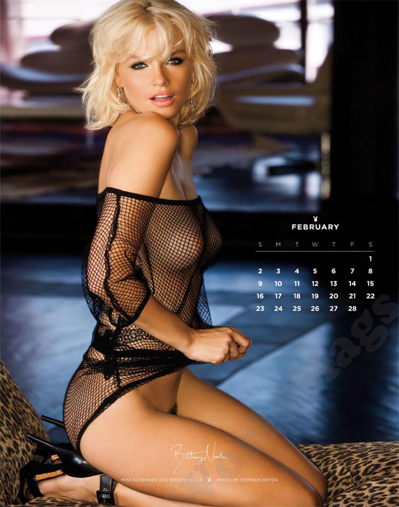 Calendário Playboy 2014 (2)