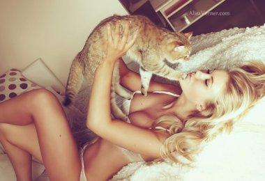 Gato Gatinha (6)