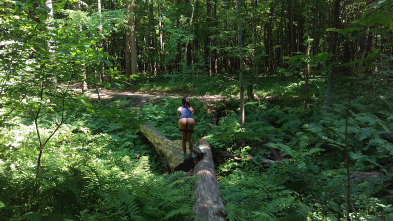 Passeio Pela Natureza (3)