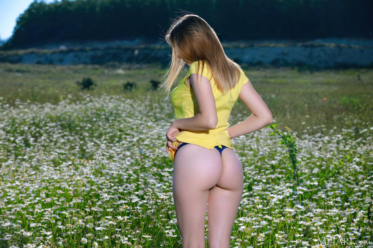 Flores Lindas (4)