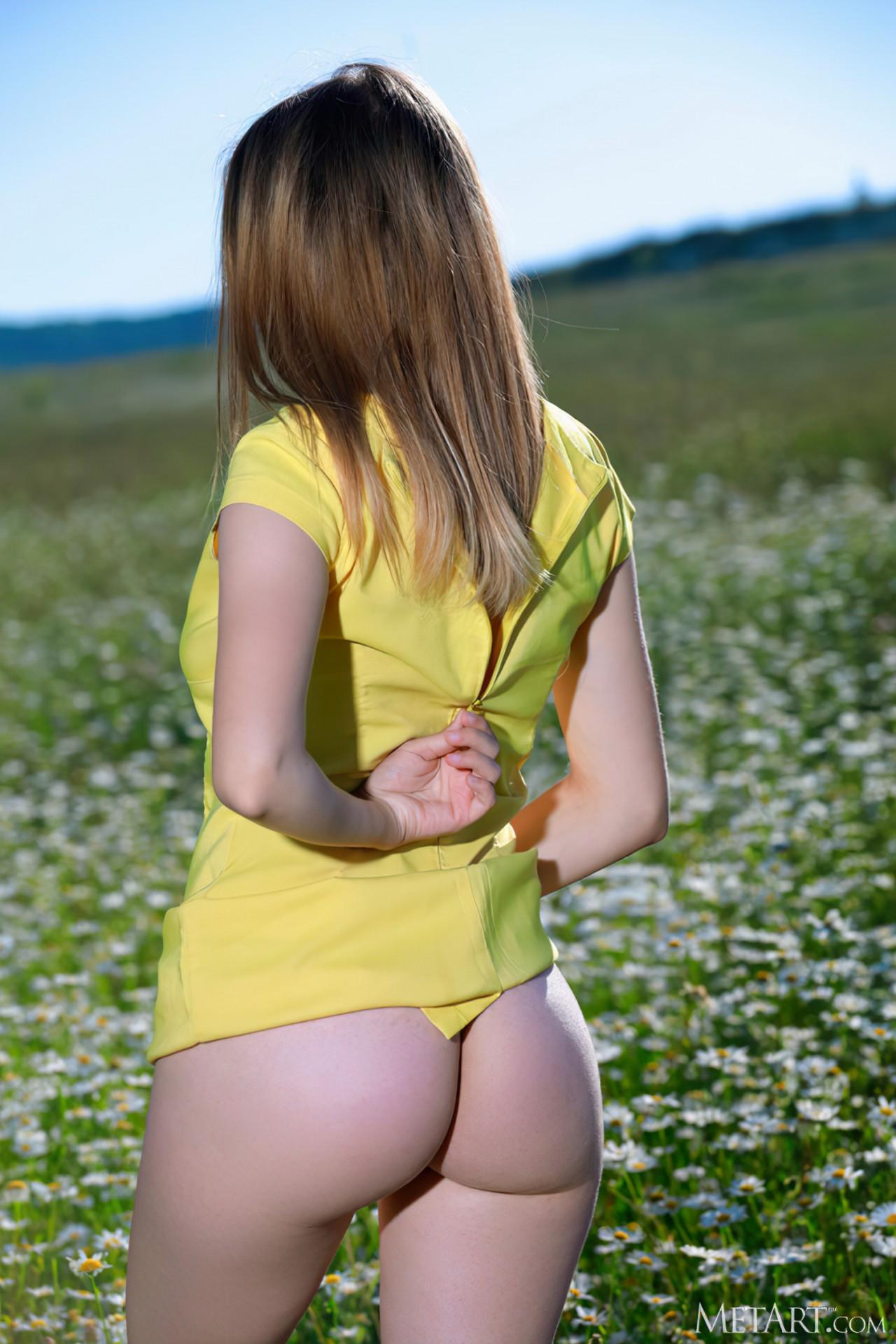 Flores Lindas (6)